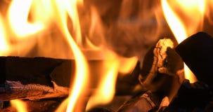 Camp fire panning movement. Closeup of camp fire panning movement stock video