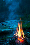 Camp fire. On the river bank, vertical Royalty Free Stock Image