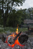 Camp fire vertical image. Burning camp fire in dusk in forest Stock Photo
