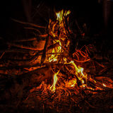 Camp fire with wood Royalty Free Stock Images