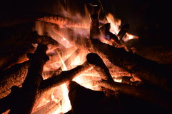 Camp fire. In the woods Stock Photos