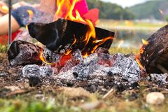 Free Camp Fire. Yellow Orange Flare Of Light From Burned, Fire Flame Burn On Wood With Red And Black On Coal Royalty Free Stock Photography - 175409927