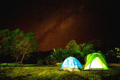 Camp in forest at night with star Royalty Free Stock Photo