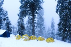 A camp in a forest during winter royalty free stock photo