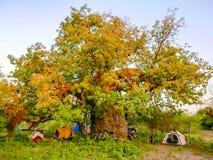 Camp ground in Botswana Stock Photo