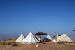 Camp In Dana Royalty Free Stock Photography