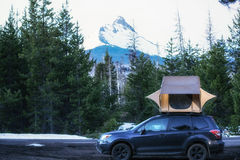 Camp Life. Camping near Mt Washington in Oregon Stock Photo