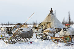 Camp of nomadic tribe in the polar tundra. At a frosty day, chum, sled and other stuff. Yamal Peninsula, Siberia Royalty Free Stock Photography