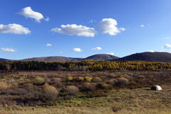 Camp outdoor  in inner mongolia Royalty Free Stock Photography