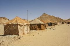 Camp in Sahara desert Royalty Free Stock Images