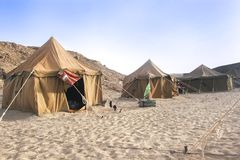 Camp in Sahara desert Stock Images