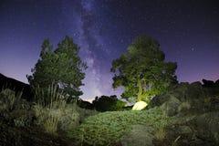 Camp sauvage au-dessous de manière laiteuse photographie stock libre de droits