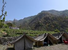 Jungle camping on the mountains. Camp setup amidst the green mountains in Rishikesh, India Royalty Free Stock Photos