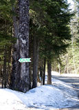 Camp sign. This way to camp sign in winter Royalty Free Stock Photography
