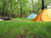 Camping in Dolly Sods in Spring. Camp site in Dolly Sods, West Virginia. Shown after rain lovely green grass Stock Images