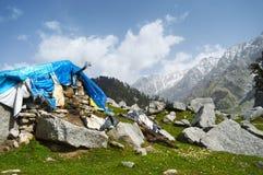Himalayan Cafe royalty free stock photos