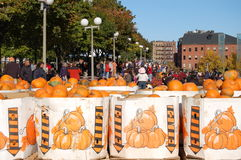 Camp Sunshine Pumpkin Festival in Boston Royalty Free Stock Images