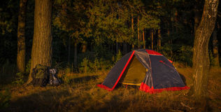 A camp tent and back packs Royalty Free Stock Image