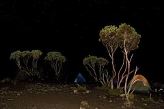 Camp tent night. Kilimanjaro 006 Shira camp tent night view Stock Photo