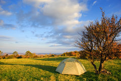 Camp tent stands in the meadow near the tree at autumn landscape Stock Photography