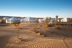 Camp of tents in a beautiful landscape of sand dunes in the desert of Sahara Stock Images