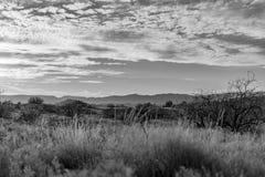 Camp Verde Arizona near Montezuma Well stock image