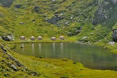 Campa alpina tält near sjön Royaltyfria Bilder