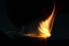 campa brandflammaskog Royaltyfri Foto