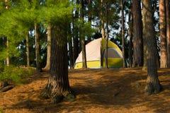 campa campingplatstent Arkivfoto