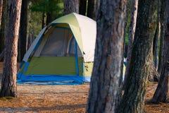 campa campingplatstentträn Arkivbild