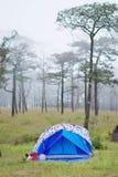 Campa för Tent Arkivfoto