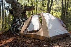 Campa i Carpathians Vår som cyklar tur i Transcarpathia Arkivfoto