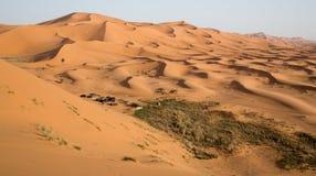 Campa i erget av Merzouga, Marocko royaltyfri bild
