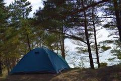 Campa i skog vid havet Royaltyfri Foto