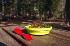 campa mat ny salladvegetarian royaltyfri fotografi