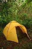 Campa med ett gult tält i vildmarken i Panama Arkivfoton