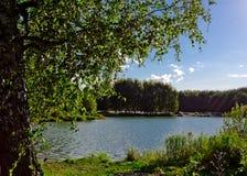 Campa nära floden Royaltyfria Bilder