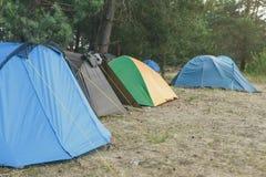 Campa och tält under pinjeskogen arkivfoton