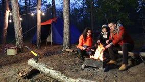 Campa och tält under pinjeskogen