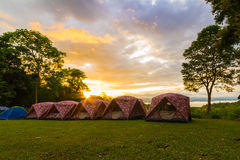 Campa tält i morgon Arkivbilder