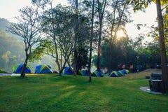 Campa tält i skog Arkivbilder