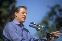 Campañas de vice presidente Al Gore Imágenes de archivo libres de regalías
