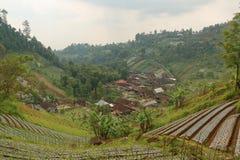 Campagna agricola in Java centrale Immagine Stock Libera da Diritti