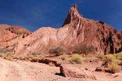 Campagna andina tipica in Bolivia vicino a Tupiza Fotografia Stock