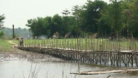 Campagna, bambù, Cambogia archivi video