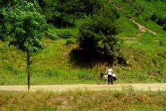 Campagna, Corea del Nord Fotografie Stock