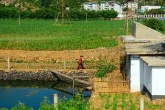 Campagna, Corea del Nord Fotografia Stock