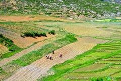Campagna, Corea del Nord Fotografia Stock Libera da Diritti