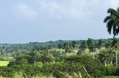 Campagna del paesaggio di Cuba vicino a Varadero Immagine Stock Libera da Diritti
