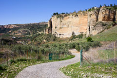 Campagna dell'Andalusia Fotografie Stock